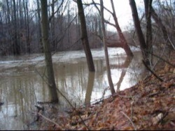 The Vermilion River (Ohio) 2013-12-22