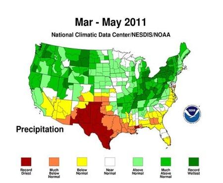 NOAA Precipitation Map